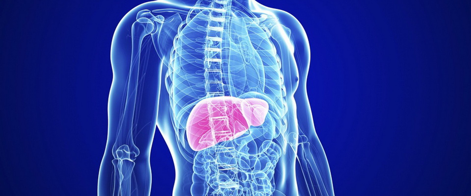 Cleansing of the intestine and liver with mineral water