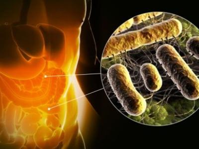 What is the proper way of correction of intestinal microflora?